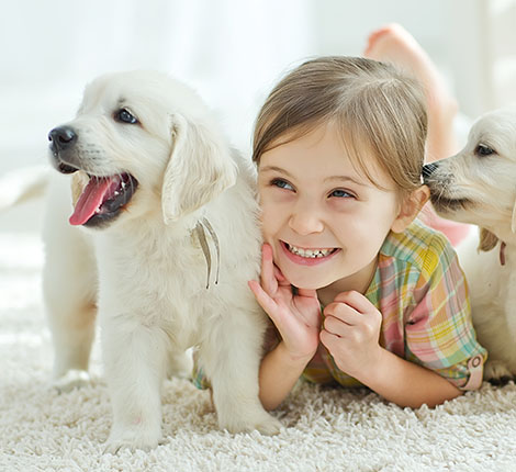 kids-girl with white puppies